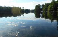 image pawtuckaway lake
