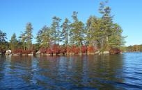 image Pawtuckaway Lake fall