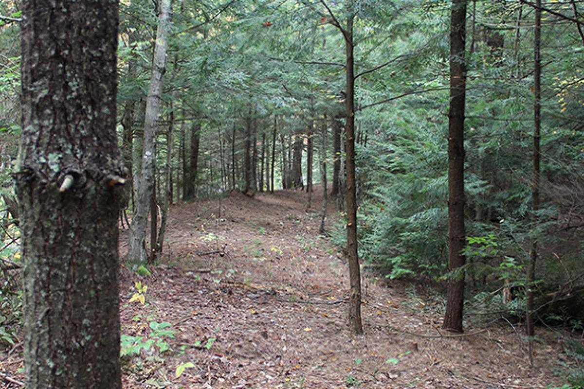 photo of North River Preserve